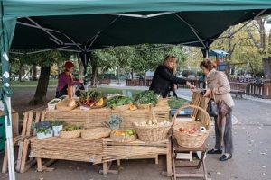 Биологический рынок в Принсипи Реал