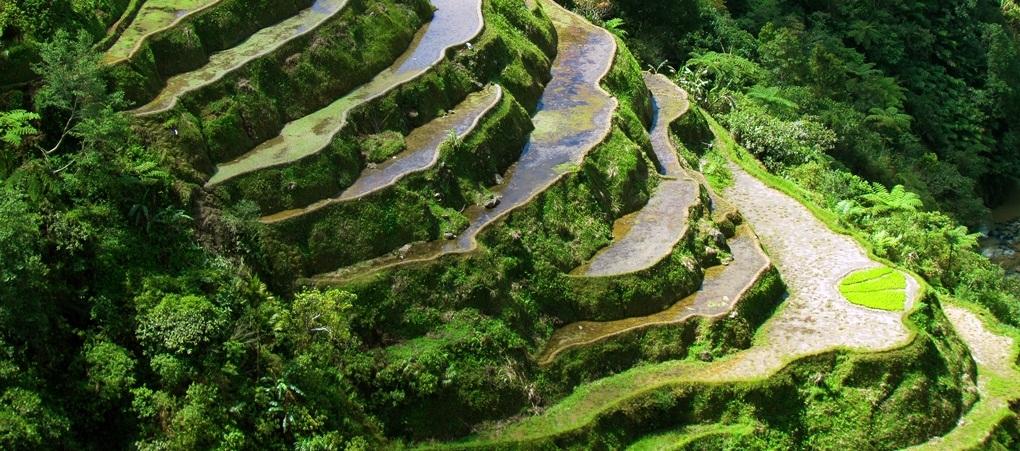 Рисовые террасы Банауе. Филиппины
