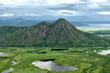 Пантанал – удивительные болота Бразилии