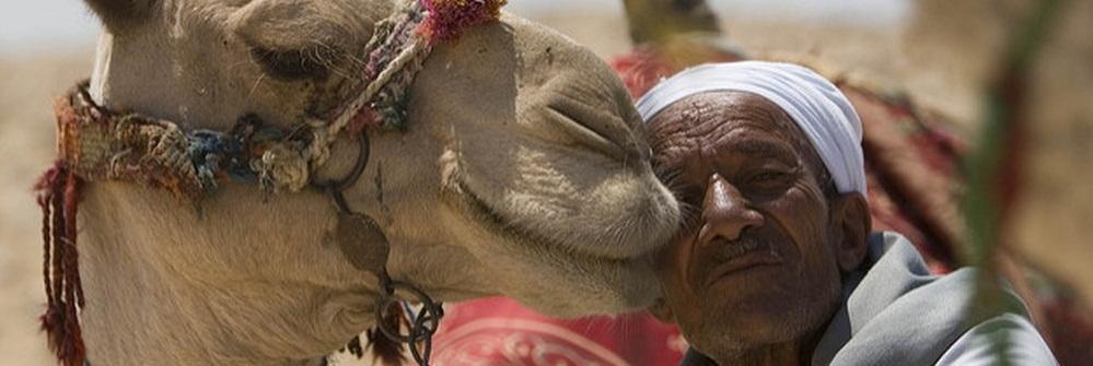Почему стоит посетить Египет