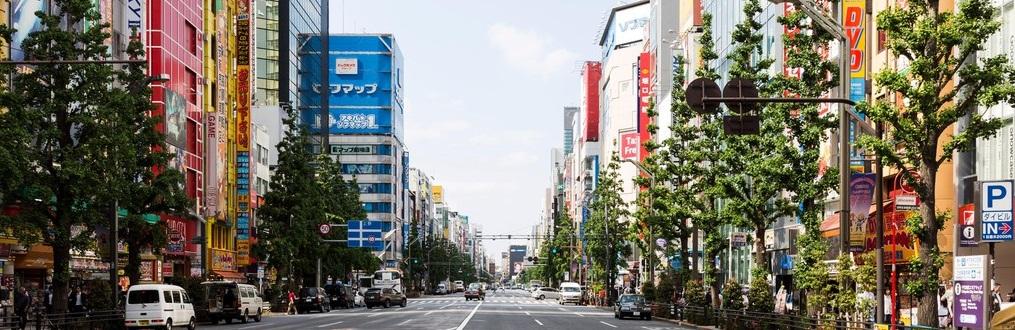 Почему стоит посетить Токио